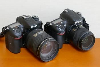 P1010855-2.jpg