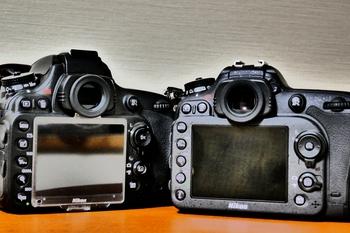 P1020364-2.jpg